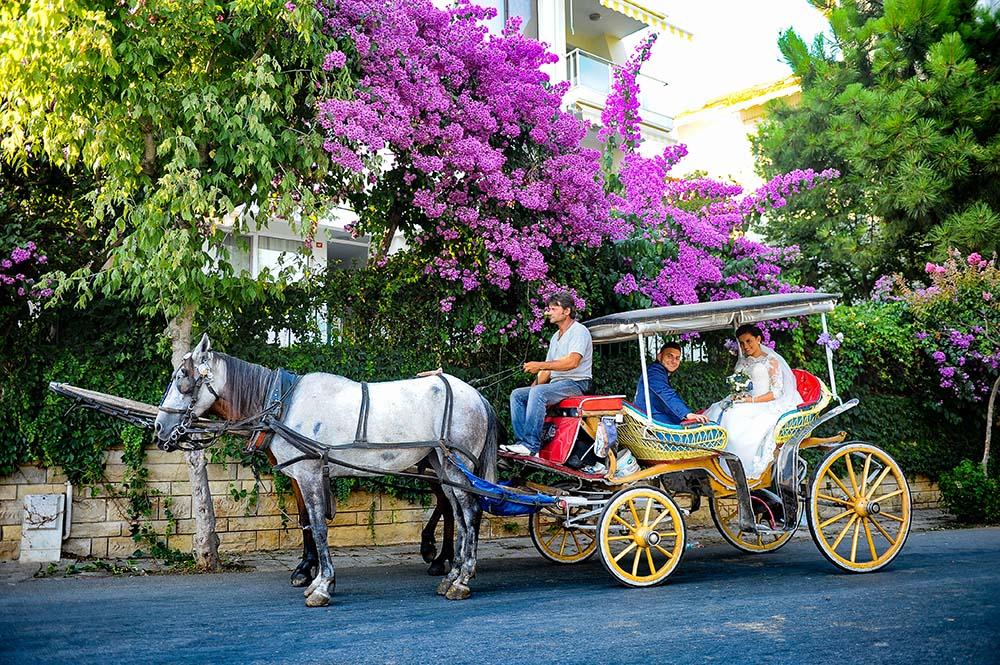 büyükada düğün dış çekim adalar fotoğrafçı - b  y  kada d      n d       ekim - Adalar Fotoğrafçı | Düğün Fotoğrafçısı Büyükada,Heybeliada,Kınalıada Fotoğrafları