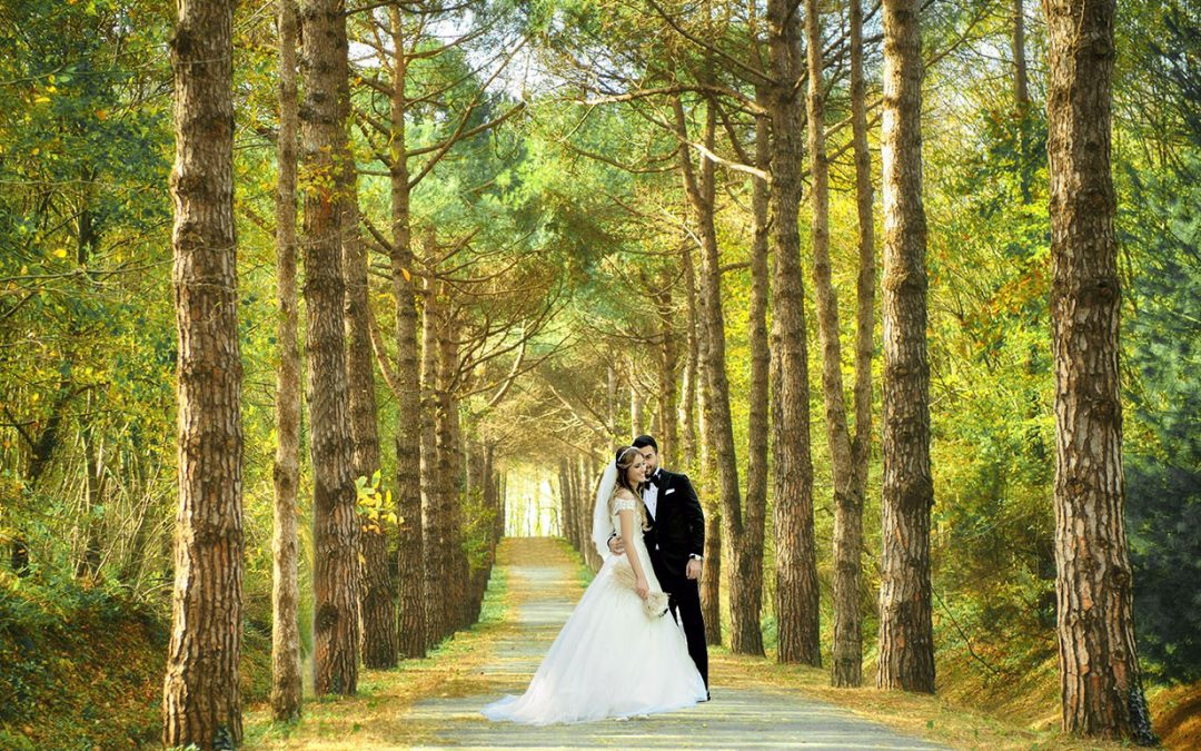 Atatürk Arboretumu Düğün Fotoğrafları Çekimi