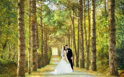 Atatürk Arboretumu Düğün Fotoğrafları Çekimi düğün fotoğraf çekimi için en iyi yerler - Atat  rk Arboretumu D      n Foto  raflar     ekimi 400x250 - İstanbul'da Nişan Düğün Fotoğraf Çekimi İçin En İyi Yerler, Mekanlar